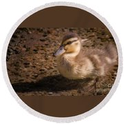 Duckling Round Beach Towel