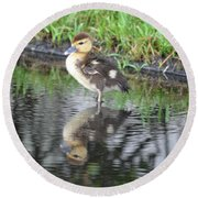 Duckling With Reflection Round Beach Towel