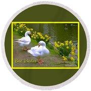 Ducks And Daffodils Greeting Round Beach Towel
