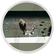 Ducks At The American Indian Museum Round Beach Towel