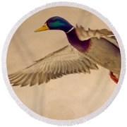 Ducks In Flight Round Beach Towel