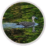 Ducks On Green Reflections - Panorama Round Beach Towel
