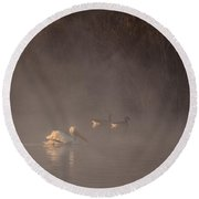 Ducks Pelican Birds On A Foggy Lake Nature Fine Photography Print  Round Beach Towel