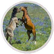 Dueling Mustangs Round Beach Towel