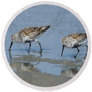 Dunlins Round Beach Towel