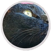 Dusty Black Cat Round Beach Towel