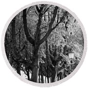 Dutch City Trees - Black And White Round Beach Towel