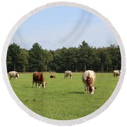 Dutch Landscape With Cows Round Beach Towel