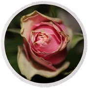 Dying Rose Round Beach Towel