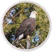 Eagle 1979 Round Beach Towel