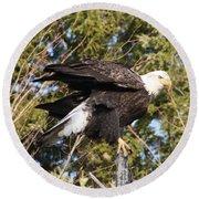 Eagle 1982 Round Beach Towel