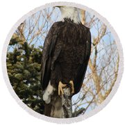 Eagle 1991a Round Beach Towel