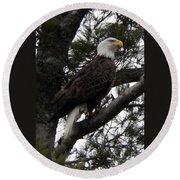 Eagle 9786 Round Beach Towel