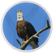 Eagle Calling Round Beach Towel