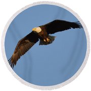 Eagle Flight 6 Round Beach Towel