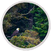 Eagle In Trees  Round Beach Towel