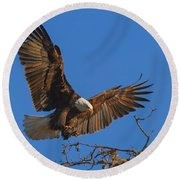 Eagle Landing Round Beach Towel