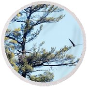 Eagle Nest Round Beach Towel