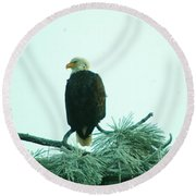 Eagle On A Frozen Pine Round Beach Towel by Jeff Swan