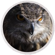 Eagle Owl 2 Round Beach Towel