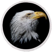 Eagle Portrait II Round Beach Towel