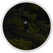 Eagle Splendor Round Beach Towel