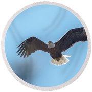 Eagle Through The Trees Round Beach Towel