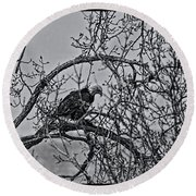 Eagles Along The Mississippi 2 Round Beach Towel