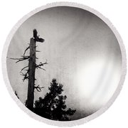 Eagles And Old Tree In Sunset Silhouette Round Beach Towel