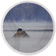Eagles On Foggy Morning Round Beach Towel