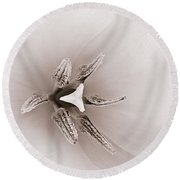 Early Blooming Tulip Round Beach Towel