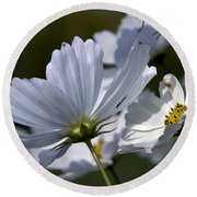 Early Dawns Light On Fall Flowers 02 Round Beach Towel