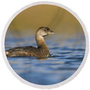 Early Morning Grebe Round Beach Towel