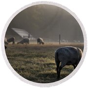 Early Morning Sheep Round Beach Towel