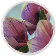 Early Spring Beauty Round Beach Towel