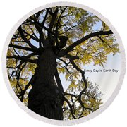 Earth Day Special - Ancient Tree Round Beach Towel