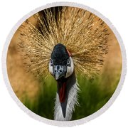 East African Crowned Crane Square Format Round Beach Towel