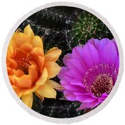 Easter Lilly Cactus Flowers  Round Beach Towel