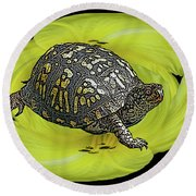 Eastern Box Turtle On Yellow Lily Round Beach Towel