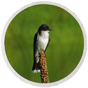 Eastern Kingbird Round Beach Towel