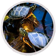 Eastern Painted Turtles Round Beach Towel