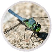 Eastern Pondhawk Side Round Beach Towel