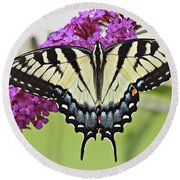 Eastern Swallowtail  Round Beach Towel