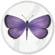 Eastern Tailed Blue Butterfly Round Beach Towel by Anonymous