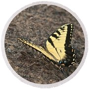 Eastern Tiger Swallowtail 8564 3241 Round Beach Towel