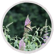 Eastern Tiger Swallowtail Butterfly -  Featured In Wildlife Group Round Beach Towel