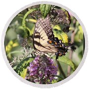 Eastern Tiger Swallowtail - Butterfly Round Beach Towel