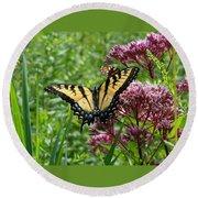 Eastern Tiger Swallowtail On Joe Pye Weed Round Beach Towel