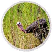 Eastern Wild Turkey - Longbeard Round Beach Towel