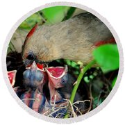 Eat Up Round Beach Towel by Frozen in Time Fine Art Photography